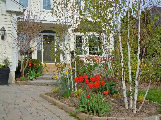 Lakelands Bed and Breakfast: Front Entrance with Tulips and Daffodils in Bloom