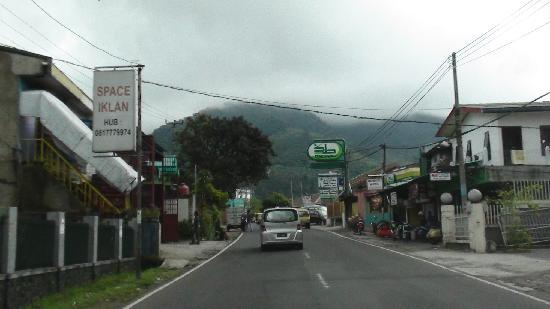 Puncak, Indonesia: typical view along the B-roads