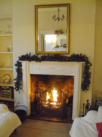 Westbury Park Guest House: The cosy pre-Christmas feel was wonderful.