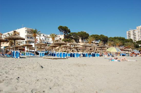 HSM S'Olivera: beach