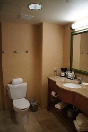 Hampton Inn & Suites Tulare : Bad