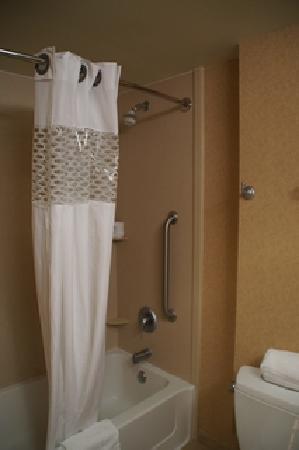 Hampton Inn & Suites Tulare : Dusche