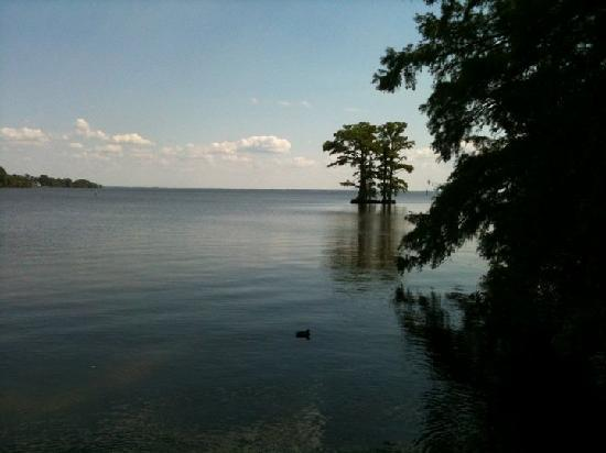 Edenton, Carolina del Norte: A shot of the Albemarle Sound