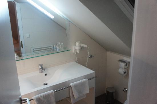 Landgasthof Goldener Adler: New, clean bathroom with good shower