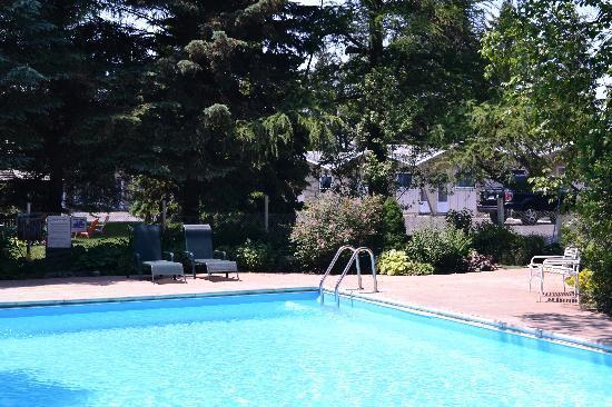 Suburban Motel : Pool Area