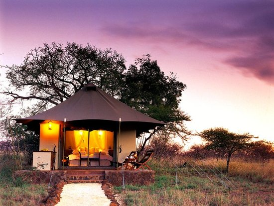 White Elephant Safari Lodge Luxury Tent