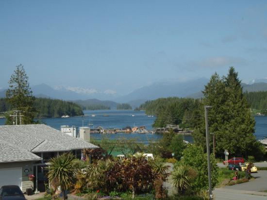 Adventure Tofino B&B: view from window