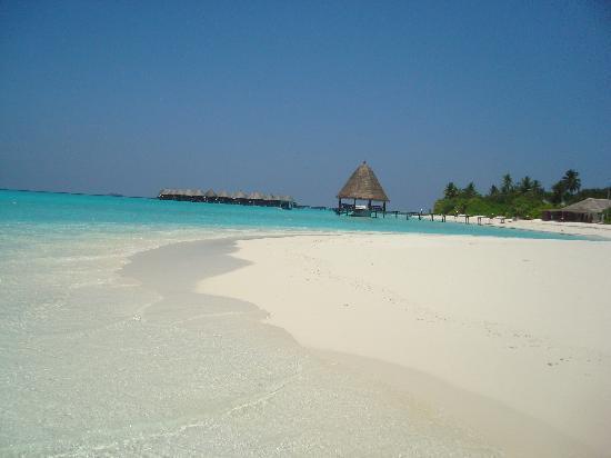 Angaga Island Resort : Jetty and water Villa's.