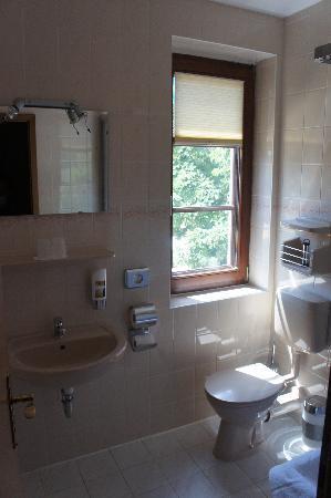 Erlebnishotel Zur Schiffsmuehle: Bathroom, only shower, no bath, but clean