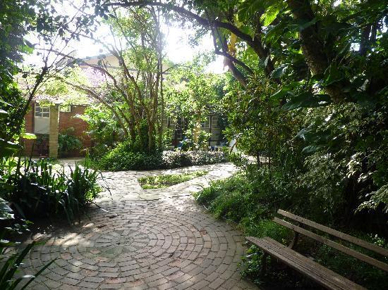 Telhado Verde by HTL: Camino al desayuno matinal
