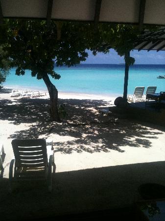Adaaran Select Meedhupparu: View from Room 251