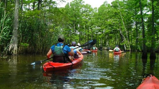 Back Bay Kayak Tours Virginia Beach