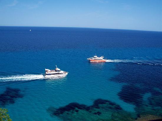 Complejo Calas de Mallorca: Views