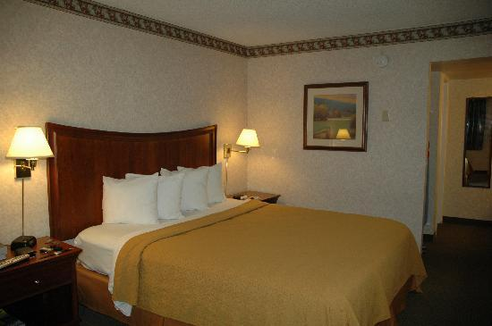 Quality Inn Downtown: Room 220 - bed