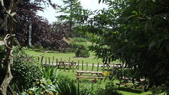 Manor Wildlife Park: view while having lunch