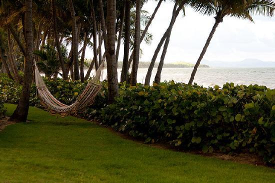 The Marbella Club: Hammock overlooking the water