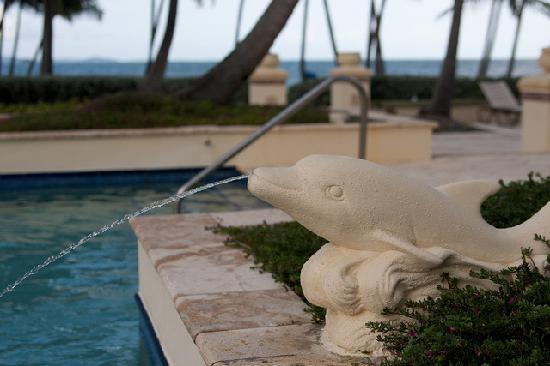 The Marbella Club: Dolphin pool