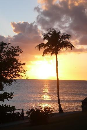 Hawksbill by Rex Resorts: Carribean sunset