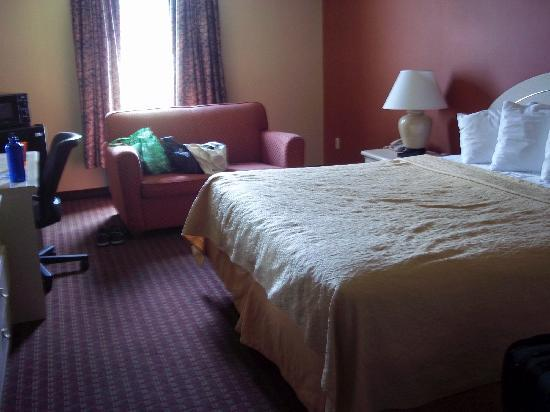 Pocomoke City, MD: Bed, sitting area, fridge