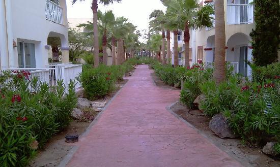 Sirenis Hotel Club Aura : Hotel path
