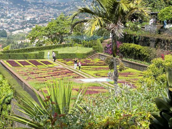 Botanic Garden Map Picture Of Madeira Botanical Garden Funchal Tripadvisor