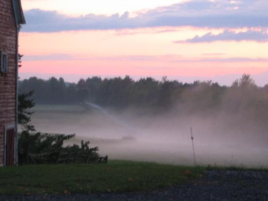 Moore's Hill Bed and Breakfast: Mist rises over fields on Moore's Hill