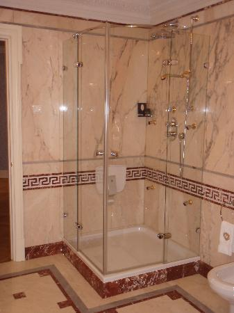 Taleon Imperial Hotel: Shower