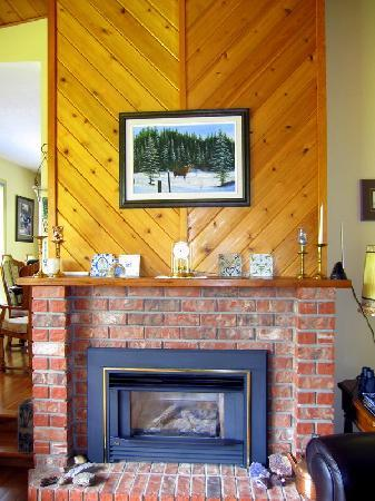Beaverly Bed & Breakfast: Fire place in the living room