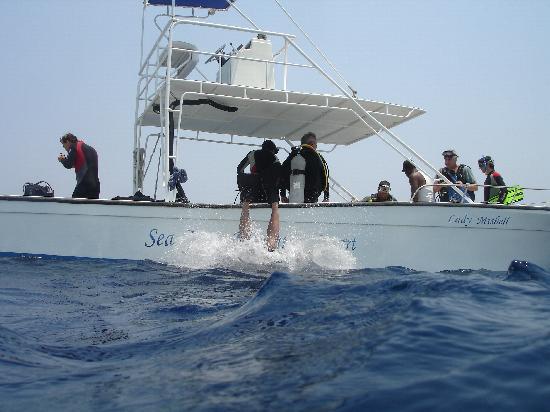 Seagrape Plantation Resort: one of Seagrapes dive boats