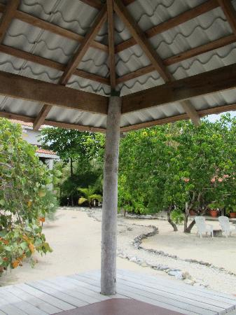 Sante Wellness Retreat: From Palapa looking back at the main house