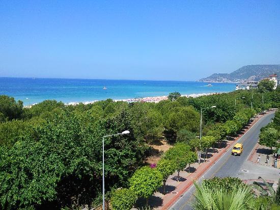 Gardenia Hotel room view