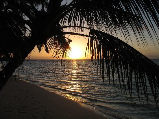Vilamendhoo Island Resort & Spa: 18.06.2011