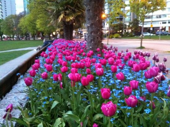 Greenbrier Hotel: vancouver