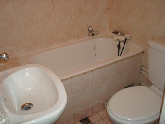 Hotel de Sully: バスタブ付のシャワー、トイレ