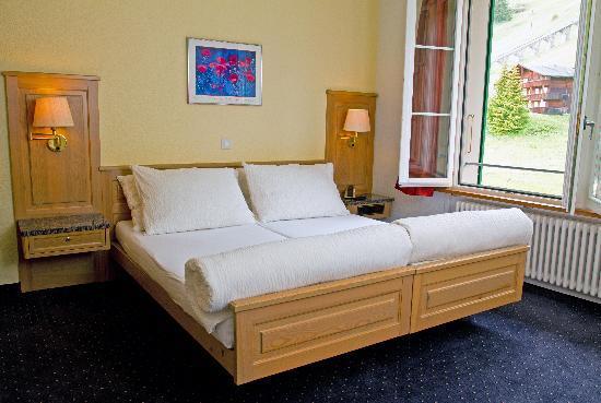 Hotel Jungfrau : Standard room