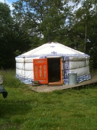 Strawberry Skys Yurts: yurt