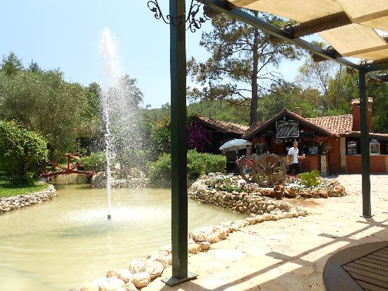 Hotel Berke Ranch : Berke Ranch garden