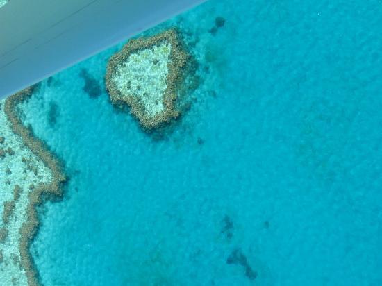 Airlie Beach, Australia: Heart Reef