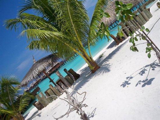 Nika Island Resort & Spa : Spiaggia Bepi's