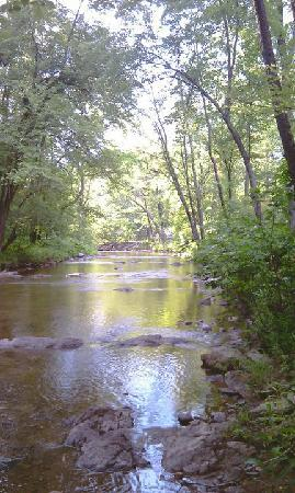 Gooney Creek Campground: View down the river from campsite 21.