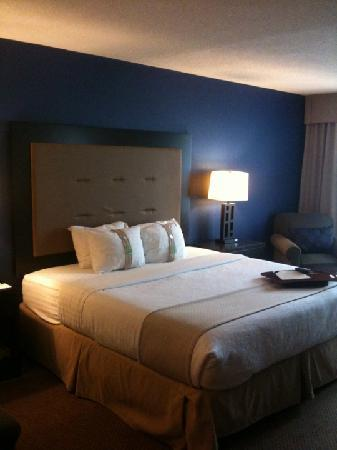 Holiday Inn Washington DC / Greenbelt : Nicely decorated room