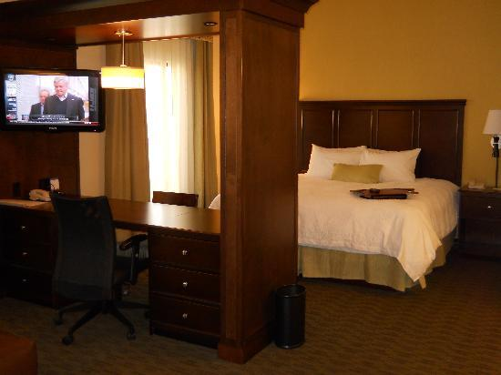 Hampton Inn & Suites Birmingham/280 East-Eagle Point: king studio suite