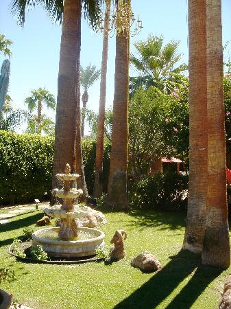 Desert Paradise Gay Men's Resort: Perfectly manicured garden.