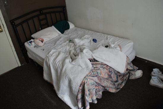 Chocolat Hostel: dreckiges Bett (wir haben mit eigenen Handtüchern auf den Kissen geschlafen)