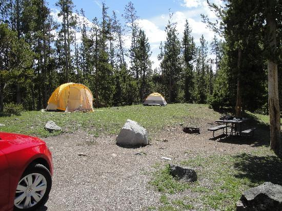 Indian Creek Campground: Plenty of space for tents