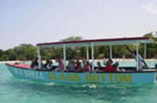 Sea Shell Charters