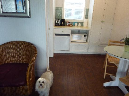 bella gave it four paws up picture of mcbee cottages cannon rh tripadvisor com mcbee cottages cannon beach reviews mcbee cottages cannon beach reviews