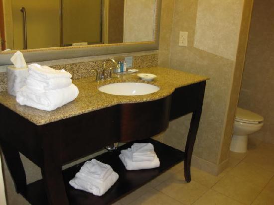 Hampton Inn Harrisonburg South: Nice bathroom.