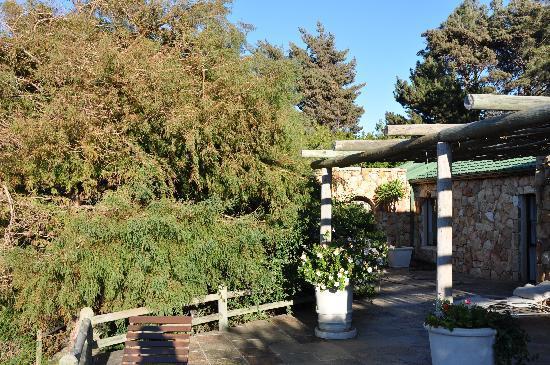 The Tarragon: Terrace