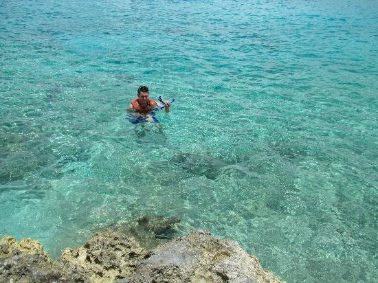 Chankanaab Beach Adventure Park: snorkeling
